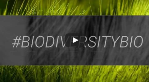 #biodiversitybio