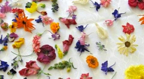 """Innovative ricette con i fiori per piatti """"profumati"""""""