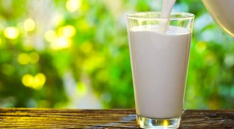 Latte di soia più nutriente tra le alternative vegetali al latte vaccino: la ricerca