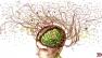 Memoria, avere troppi ricordi ci paralizza