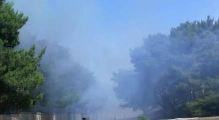 Emergenza incendi: i dati di Legambiente