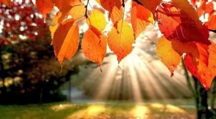 Addio estate: ecco quando arriva l'equinozio d'autunno 2018