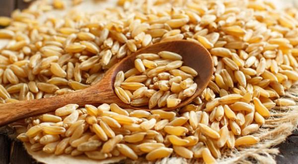 Kamut – 7 ricette salutari a base di Kamut