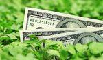 Ecco come fare una gestione finanziaria personale