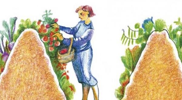 Creare un letto da giardino riutilizzando legno marcio per fare a meno dell'irrigazione