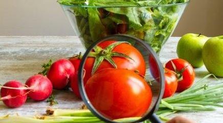 Food, censimento Coldiretti: 5047 specialità tradizionali italiane