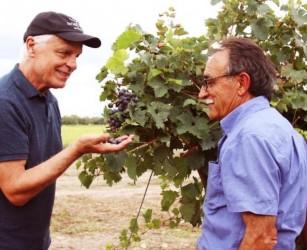 Michele Placido e la passione per il vino