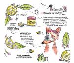 Gli ingredienti illustrati: limone, usi e proprietà ? Seconda parte