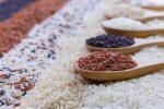 Il riso sta diventando sempre meno nutriente: è colpa della CO2