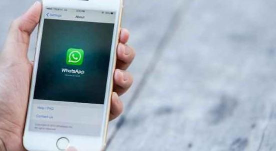 Nelle prossime settimane arriva in Italia WhatsApp Business per iPhone