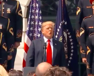 Donald Trump's Patriotic Glory Of America Eagles-Free Eagles Celebration Of Unity (AND WHITES!)