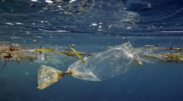 Idee originali ed ecologiche per ridurre la plastica