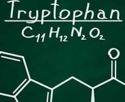 Triptofano e serotonina: aumentare il benessere
