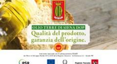 Qualità del prodotto, garanzia dell'origine. Alla scoperta dell'Olio Terre di Siena Dop
