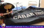 False indicazioni in etichetta. I carabinieri sequestrano quasi 7.000 prodotti