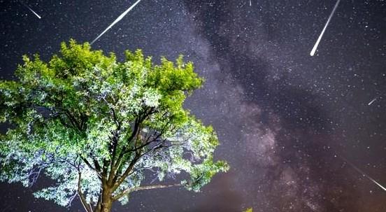 Perseidi: in arrivo le stelle cadenti di agosto. Tutto quello che c'è da sapere sulle 'Lacrime di San Lorenzo'