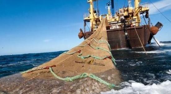 Sprechi e consumi di pesce sono insostenibili, 1 su 3 non arriva nel piatto. Parola dell'Onu