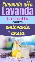 Limonata alla Lavanda: la ricetta contro emicrania e ansia