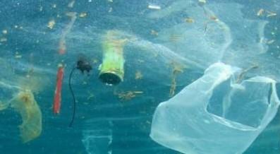 Il Cnr-Irsa aderisce alla Plastic Free Challenge