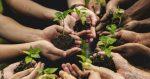 Eima 2018: Agricoltura di precisione – Accordo tra Confagricoltura e Topcon Agriculture