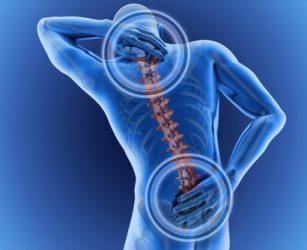 L'importanza degli esercizi posturali