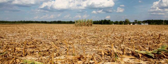 Allarme siccità in Emilia-Romagna per effetto di un inverno asciutto