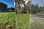 'Valorizzazione del patrimonio forestale pubblico attraverso la campagna Mosaico Verde. Gli enti pubblici si raccontano'