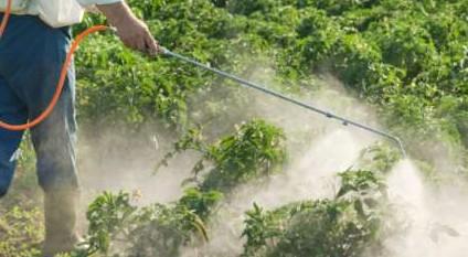 Liberi dai pesticidi ed aumento delle superfici coltivate ad agricoltura biologica