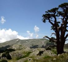 """Basilicata, Osservatorio Mercure: """"È tra le zone meno inquinate d'Europa"""""""
