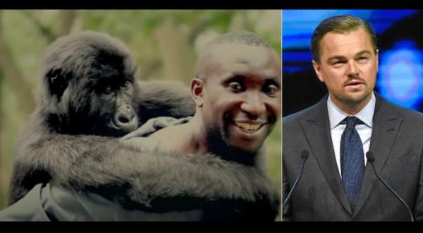 Di Caprio, Jenkins e Netflix a lavoro su 'Virunga': film sui gorilla a rischio estinzione