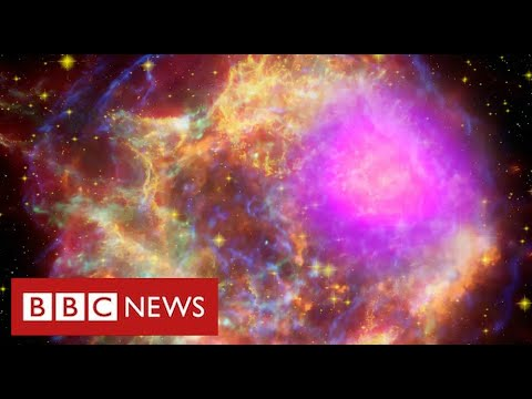 "Scientists find ""strong evidence"" for new mystery sub-atomic force of nature – BBC News"