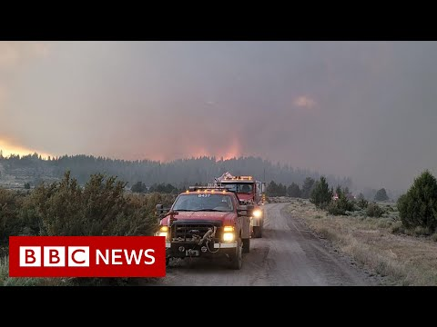 US Bootleg Fire burns area larger than Los Angeles  – BBC News