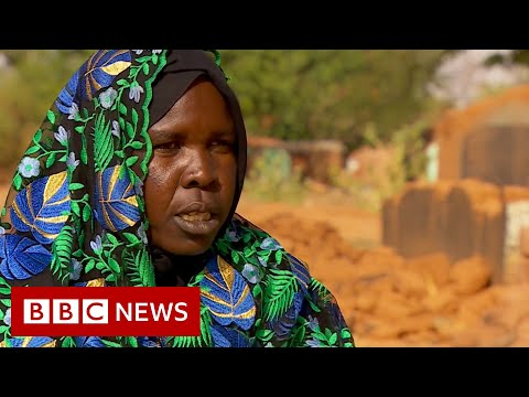 Sudan's Darfur conflict latest surge in violence displaces thousands – BBC News