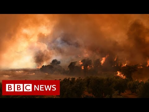 Eight dead as wildfires engulf Turkey resorts  – BBC News