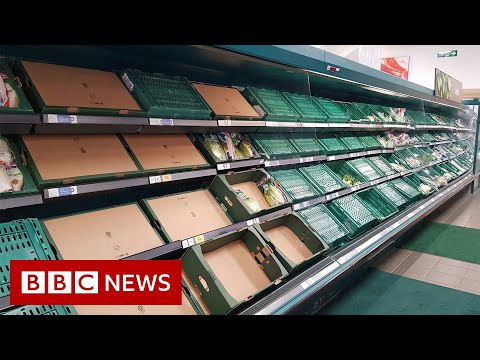 Is Brexit causing food and medicine supply problems in the UK? – BBC News
